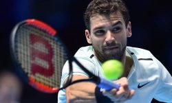 Федерер е твърде велик за Григор