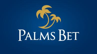 Photo of Palmsbet бонус от 110 лв. за Нови Клиенти и допълнителен бонус от 25 FREE SPINS